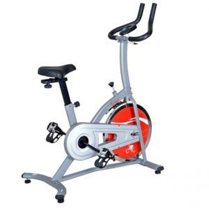 sunny Indoor Cycling stationary Bike